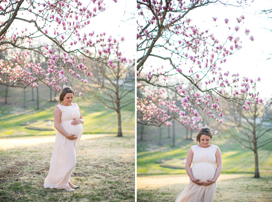Maternity Photographers Brentwood TN