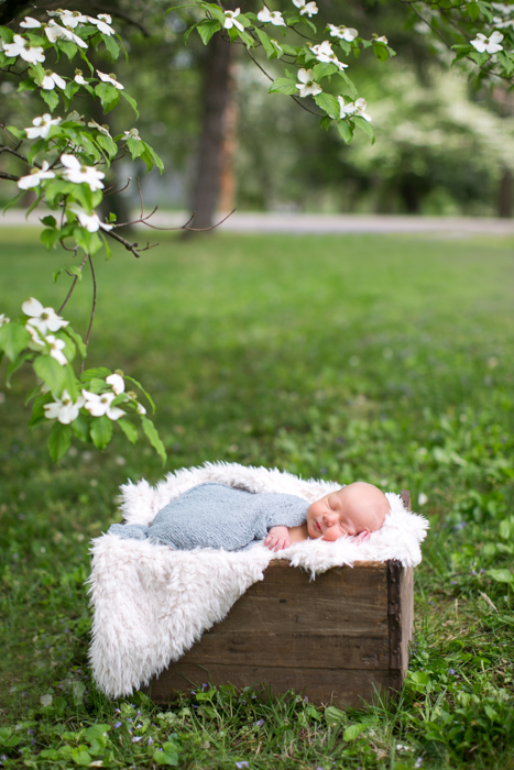 Nashville Newborn Photographers